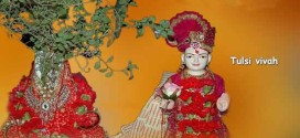tulsi vivah for marriage