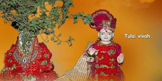 Tulsi Vivah for Early Marriage | Tulsi Vivah Dates