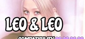 Leo relationship compatibility