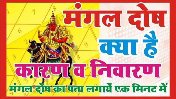 Vedic Astrologer Rao