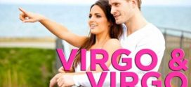 Virgo-and-Virgo-Relationship Compatibility