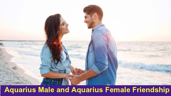 Aquarius and Aquarius – Friendship Love Sexual Compatibility